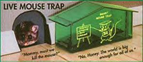 Plastic no kill mouse trap in the shape of little house