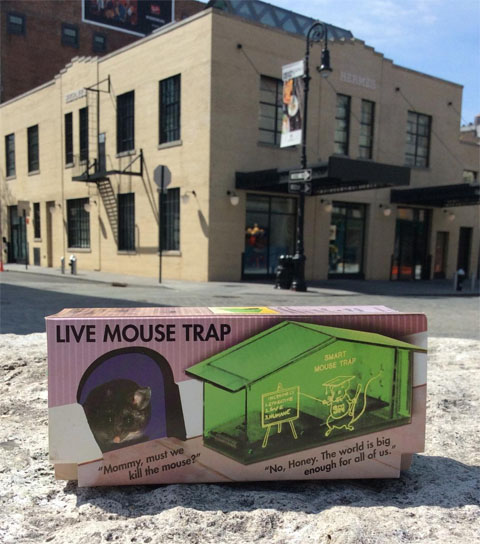 Plastic mouse trap in the shape of a small house in front of construction site in Manhattan